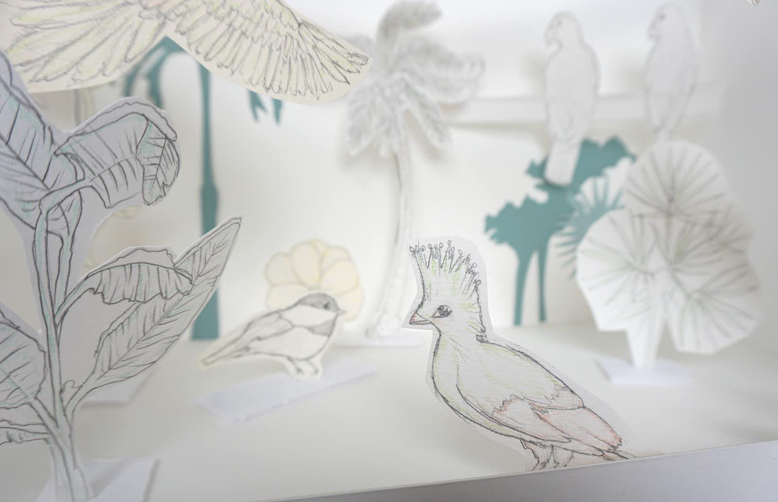 Les oiseaux tropicaux sous la neige - Mise en scene vitrine - Projet Tropiques givres - Detail