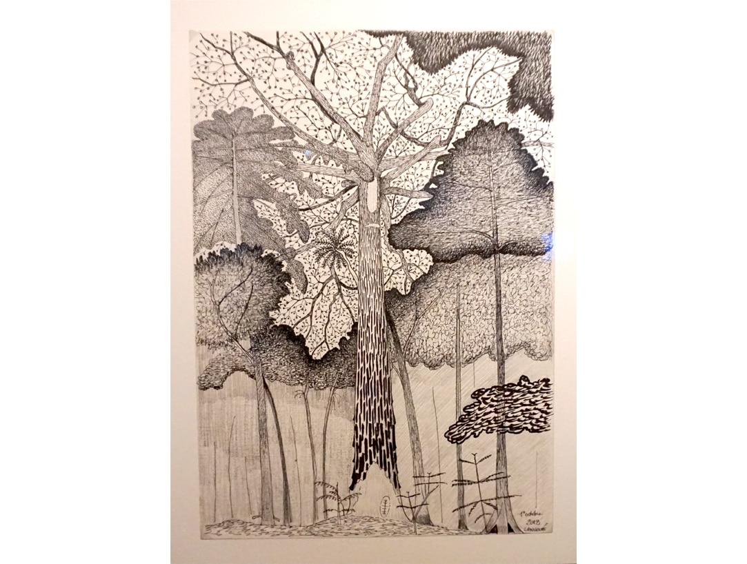 Exposition_Nous-les-arbres_Fondation-Cartier-pour-l-Art-Contemporain_Blog-Juillet-2019_11