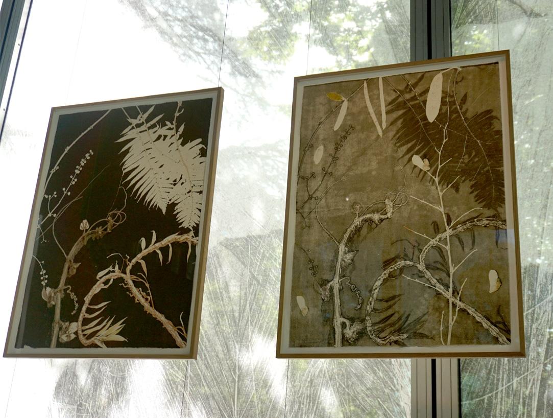 Exposition_Nous-les-arbres_Fondation-Cartier-pour-l-Art-Contemporain_Blog-Juillet-2019_2