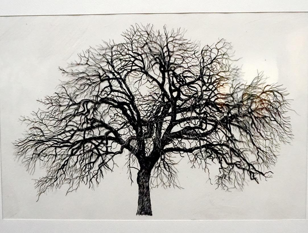 Exposition_Nous-les-arbres_Fondation-Cartier-pour-l-Art-Contemporain_Blog-Juillet-2019_9